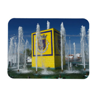 Public fountain in Azores islands Rectangular Photo Magnet