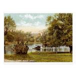 Public Garden, Boston 1909 Vintage Postcards