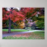 Public Garden Fall Poster