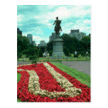 Public gardens, Boston, Massachusetts flowe Post Card