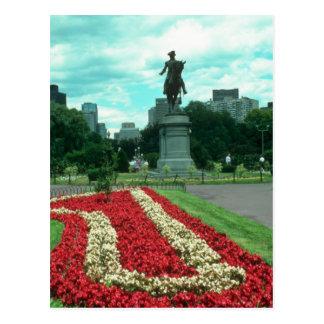 Public gardens, Boston, Massachusetts flowe Postcard