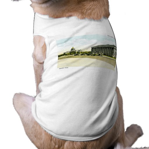 Public Library and State Capitol, Denver, Colorado Dog Tshirt