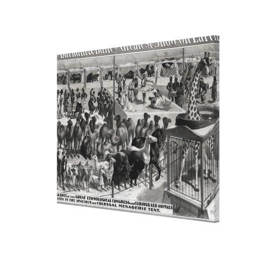 Publicidad de poster, 'el Barnum y el Bailey Impresiones En Lona