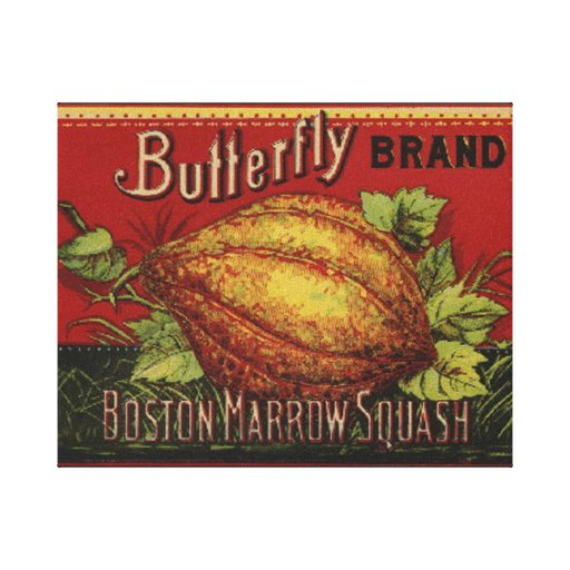 Publicidad vegetal de la antigüedad de la etiqueta impresiones en lona estiradas