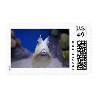 Pucker Up Postage