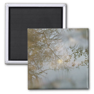 Puddle 2 Inch Square Magnet