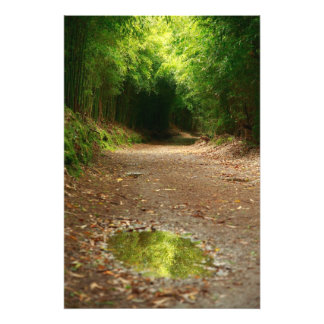 Puddle of water photo print