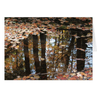 Puddle Reflections Card