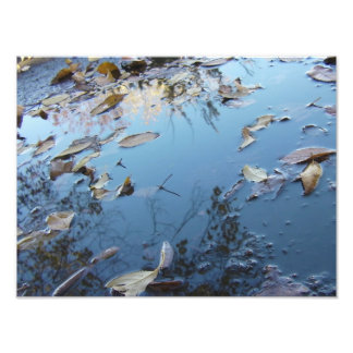 Puddled Reflection Photo Art