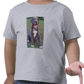 Puddy Tatz Camisetas
