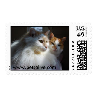 Pudgy and Petey Postage