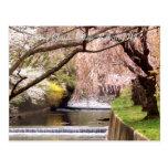 Pueblo 04 de la flor de cerezo postal