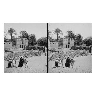 Pueblo en Egipto circa 1900 Tarjetas De Visita