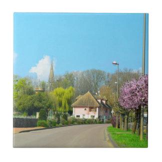 Pueblo francés del campo en la primavera con el azulejo cuadrado pequeño
