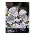 Puede dios darle esperanza, alegría, y 15:13 de postal
