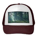 puede el bosque ser con usted - parodia gorra