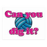 ¿Puede usted cavarlo? ¡Voleibol! Postal