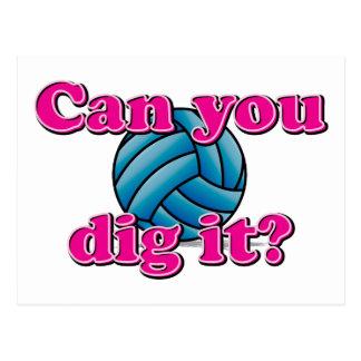 ¿Puede usted cavarlo? ¡Voleibol! Tarjeta Postal