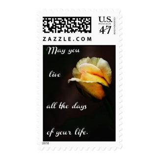 Puede usted vivir todos los días de su vida sello