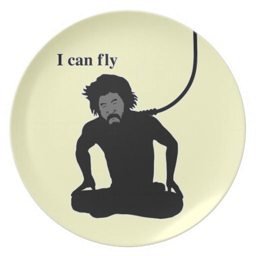Puedo fly2 platos para fiestas