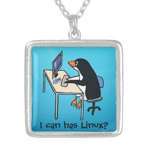 ¿Puedo tengo Linux? Grimpola