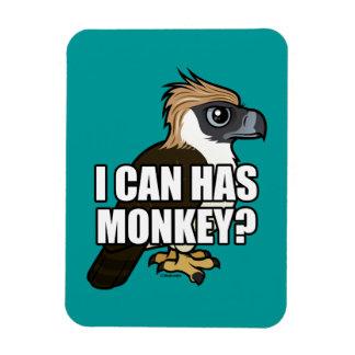 ¿Puedo tengo mono Imán Rectangular
