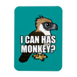 ¿Puedo tengo mono? Imán Rectangular