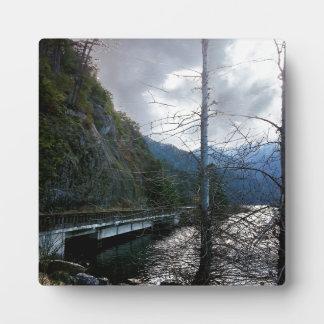 Puente al lado del creciente del lago placas de plastico