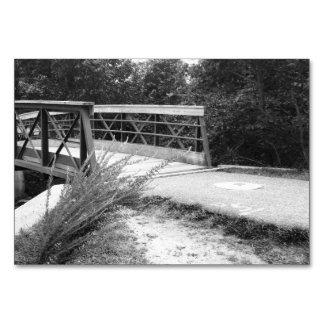 Puente blanco y negro