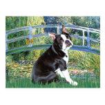 Puente - Boston Terrier #4 Tarjetas Postales