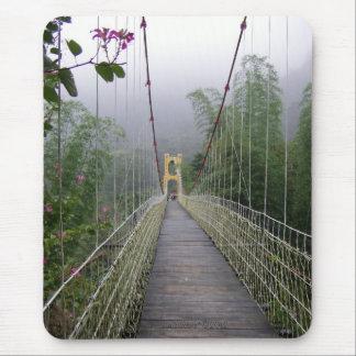Puente colgante cubierto en la niebla l Taiwán de Tapete De Ratones