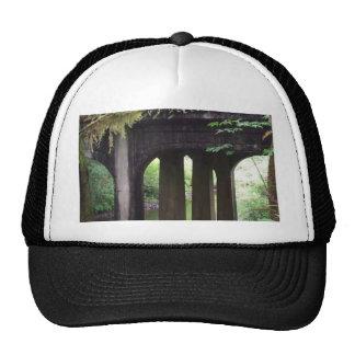 Puente cubierto de musgo sobre el río del solenoid gorra