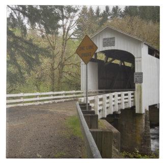 Puente cubierto del gato salvaje el condado de La Azulejos