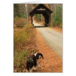 Puente cubierto y perro felicitaciones