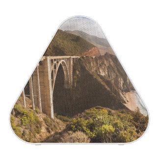 Puente de Bixby, Sur grande, California, los Altavoz