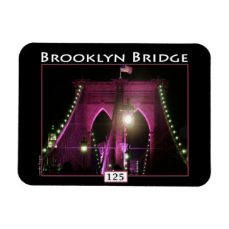 Puente de Brooklyn Imanes Rectangulares