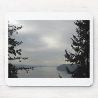 Puente de estrechos de Tacoma Tapete De Ratones