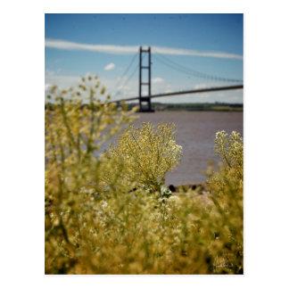 Puente de Humber en el Sun [postal]