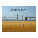 Puente de la bahía de Chesapeake Tarjeta Postal