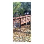 Puente de la caída plantillas de lonas