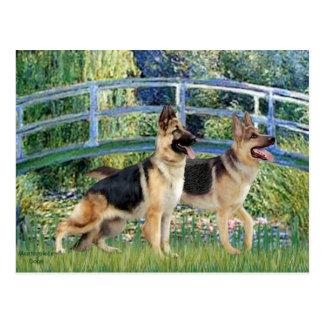 Puente de la charca del lirio - dos pastores postal