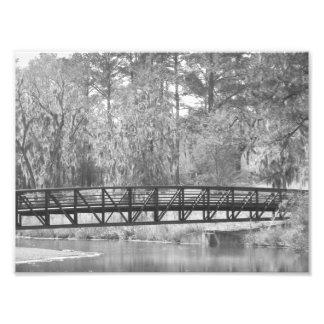 Puente de la magnolia fotografías