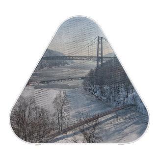 Puente de la montaña del oso altavoz bluetooth