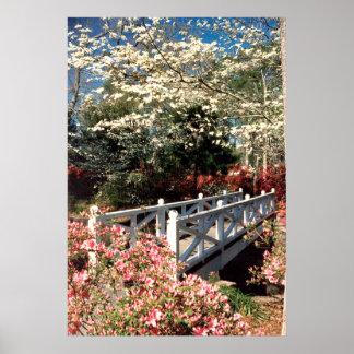 Puente de la primavera póster