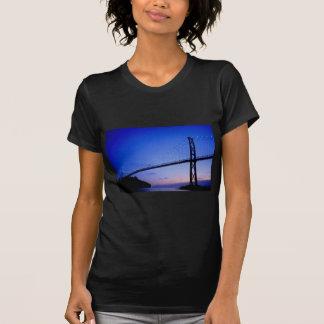 Puente de la puerta de los leones, en la camiseta