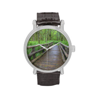 Puente de madera del rastro del claro del arce, he relojes