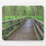 Puente de madera del rastro del claro del arce, he tapetes de ratón