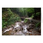 Puente de madera en el bosque con agua y las rocas tarjeta