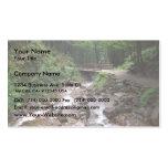 Puente de madera en el bosque con agua y las rocas tarjetas de negocios
