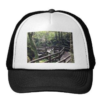 Puente de madera en el bosque gorras